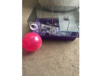 Hamster cage, ball & accessories