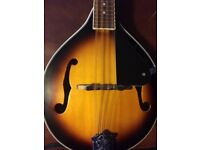 Stagg Mandolin M40 S. Includes New Gig Bag And New Leather Strap