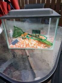 Sml fish tank
