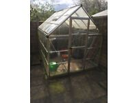 Green House. Greenhouse. Plastic with metal frame. 8x6ft. Good condition.