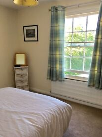 Spacious Double Room & Private Bathroom to Rent