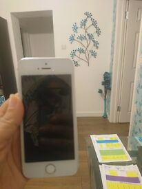 Iphone 5S parts not working (great condition