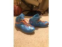 Nike signed lebron James basketball boots