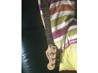Red Squire bass