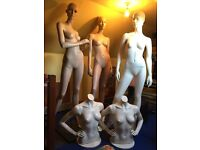 Mannequins x3 and Busts x2. Really good condition.
