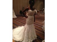 Veromia couture wedding dress