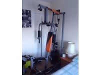 v fit multigym - and weights and bars