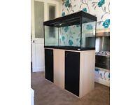 Large 3ft Fluval Aquarium with Accessories