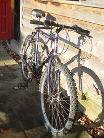 Mountain Bike - in good working order