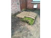 Roll out lawn turf and one and a half tonnes of sand