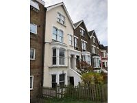 No Agency fees One Bedroom Garden Flat Next to Seven Sisters Station