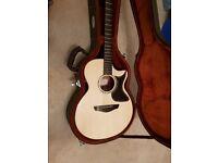 Faith Venus Acoustic Guitar