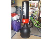 Heavy Duty Gallant Black Fre Standing Boxing/Kick boxing Punch Bag and gloves