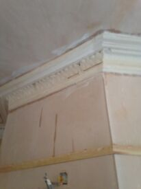 Plastering and coving services