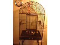 2large parrot cages in mansfield notts..