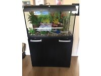 110 litre tropical fish tank with eheim filter