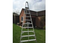 10 Step Ladder Proffesional Tripod