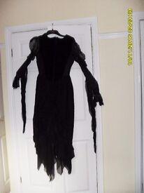 Black Goth Dress by Raven Size 10/12