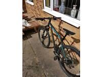 2015 Adult Frame Speciailized Rock hopper Mountain Bike with free U Lock