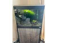 Fluval roma 80l tank and stand LED