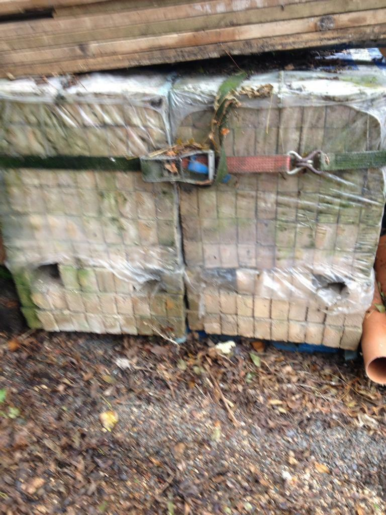 Buff bricks for sale