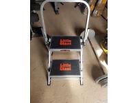 LIttle Giant Stepladder - half price!