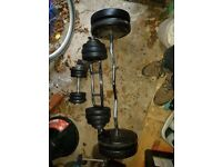 Variety Weight equipment + Weights