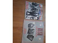 Collectible Vinyl Rock