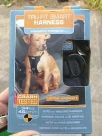Small Dog car safety harness