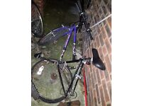Bargain!! Mountain bike for sale!