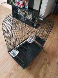 Black parakeet bird cage