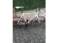 Sensa Romagna Road Bike