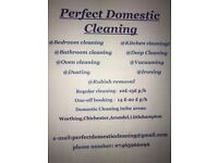 Perfect Domestic Cleaning