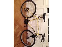 18 speed British Eagle boys/mens bicycle with 25inch wheels (with inflated tyres on).