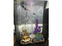 BiOrb p60 litre aquarium