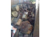 tree cuts for sale