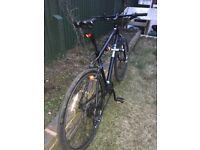 Pinnacle Hybrid Bike