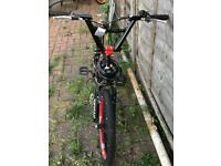 BMX Bike good for stunts | Also include 4 stunt pegs (Optional)