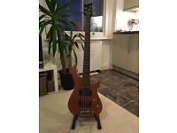 Cougar Guitar Co - 5 string Bass