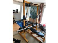 Powertec gym (bench, weights, proform treadmill, boxing bag, ab bench, dumbbells)