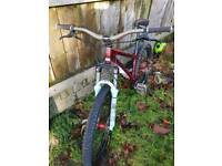 DMR DOWNHILL MOUNTAIN BIKE