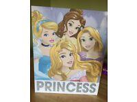 Disney Princess Lit Canvas