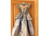 Princess Cinderella Dress Up Fancy Dress