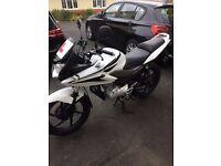 HONDA CBF125 in white/black