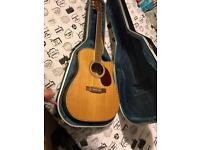 Mint condition FRESHMAN FA1DEC electro acoustic guitar WITH flight case! Almost brand new! £300