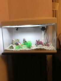 AA600LGC Fish Tank with LED and Cabinet