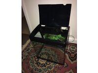 Aquarium Fish Tank 32 Litre Black frame