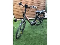 FreeGo Martin e-bike for sale