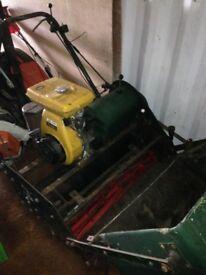 36in cylinder mower