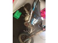 140 welsh pit bike